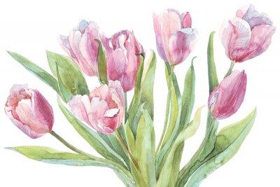 Obraz Bukiet tulipanów Akwarele ilustracji