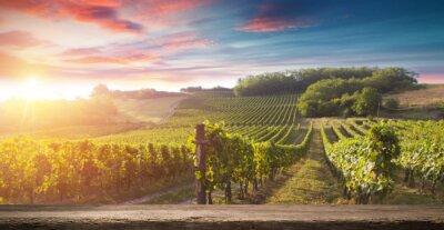 Obraz Butelka czerwonego wina i kieliszek do wina na wodden beczki. Piękne tło Toskanii