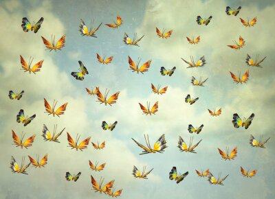 Obraz Butterflies in the sky