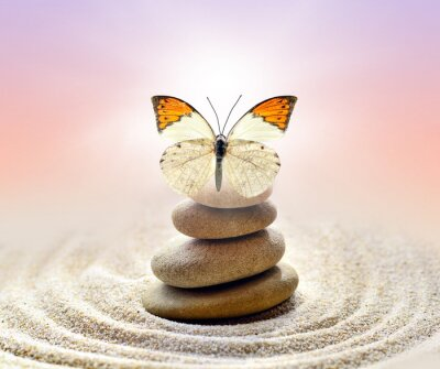 Obraz Butterfly and stones balance