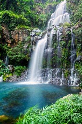 Obraz Cascade du bassin des Aigrettes - Ile de La Réunion