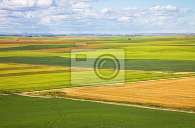 Castilla na wiosnę pola