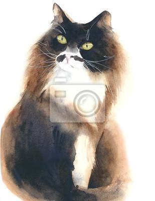 Cat puszysty kot portret akwarela ilustracji samodzielnie na białym tle