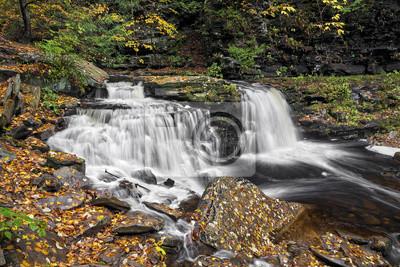 Cayuga Falls - Ricketts Glen, Pensylwania