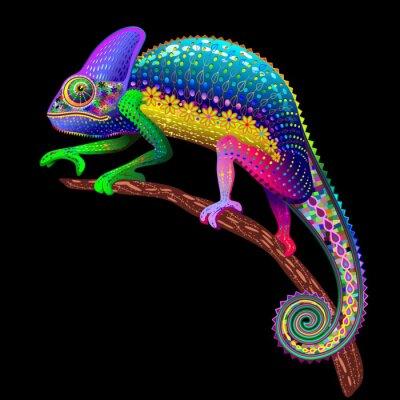 Obraz Chameleon Fantasy Rainbow Colors