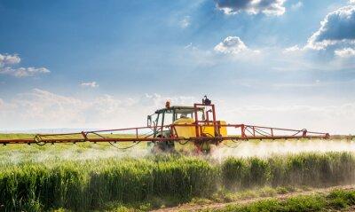 Obraz Ciągnik rozpylanie pole pszenicy