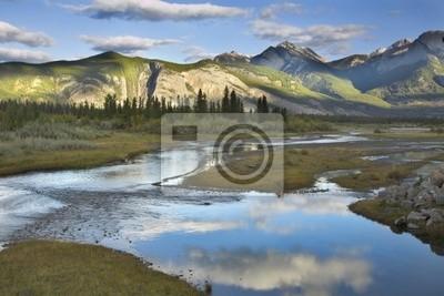 Cichy rzeki otoczone futra drzew i krzewów