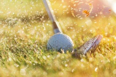 Obraz Close-up z piłeczki golfowej.