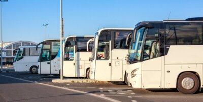 Obraz Compagnie de bus