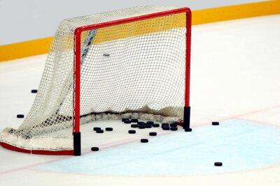 Obraz Con Porta dischi hokej