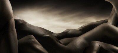Obraz corpi di nudo artistico