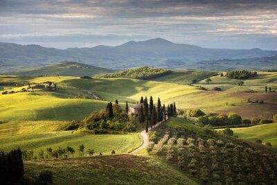 Obraz Countryside near Pienza, Tuscany, Italy