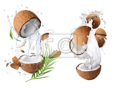 Obraz Creative Collection set with Flying in air fresh ripe whole and cracked coconut with milk splashes