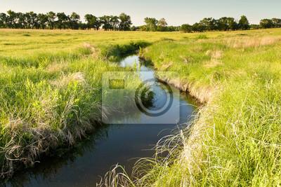 Obraz creek rozwiązania poprzez Kansas pastwiska dziedzinie