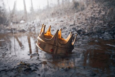 Obraz Crown in the muddy water