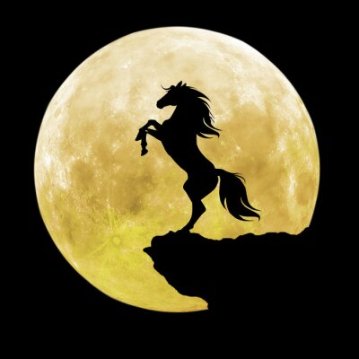 Obraz czarna sylwetka konia