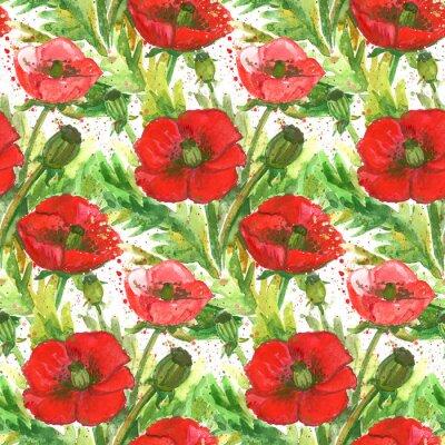 Obraz Czerwone Maki Akwarela Ilustracja