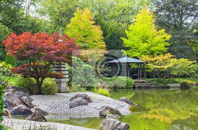 Czerwony drzewo w pobliżu zielonej staw w ogrodzie japońskim
