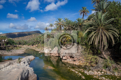 Date palms, water and blue sky
