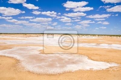 Desert Salt pobliżu jeziora Eyre południu