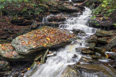 Deszczowy dzień jesieni w Ganoga Glen - Ricketts Glen, Pennsylvania