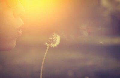 Obraz Dmuchawa Dandelion kobieta