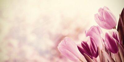 Obraz Dom Vintage Floral Background