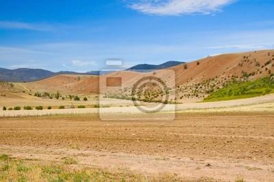Dotkniętych suszą Australijska wsi