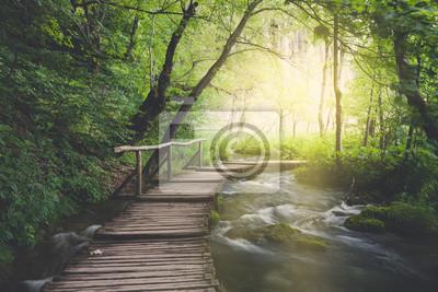 Obraz Drewniana ścieżka w poprzek rzeki w ciemnym zielonym lesie