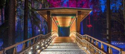 Obraz Drewniany most w parku leśnym. Nocne wielokolorowe światła.