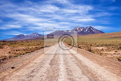 Droga brudu w pustyni Atacama, Chile, 2013