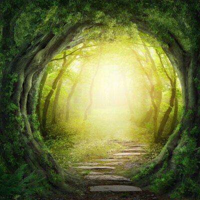Obraz Drogi w ciemnym lesie