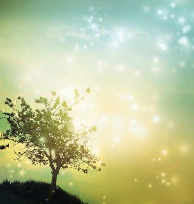 Obraz Drzewo sylwetka o zmierzchu