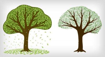 Obraz Dwa drzewa i spadające liście