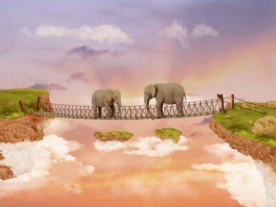 Obraz Dwa słonie na moście w niebie