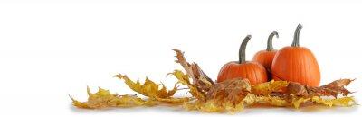 Obraz Dynie i spadające liście