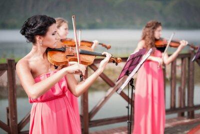 Obraz Dziewczyny gra na skrzypcach