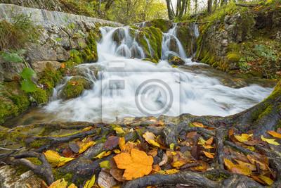 dzikie kaskady wodospadu z liśćmi w Chorwacji