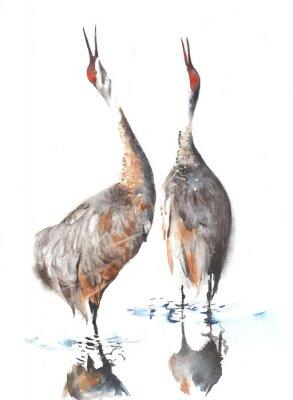 Dźwigi ptasia akwarela ilustracji ręcznie na białym tle kartkę z życzeniami
