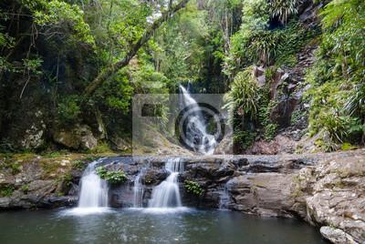 Elabana Falls w Zielonej Góry, Lamington National Park, Queensland, Australia