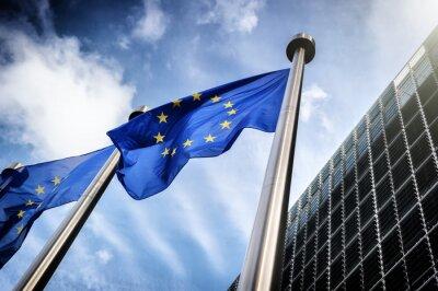 Obraz European Union flags
