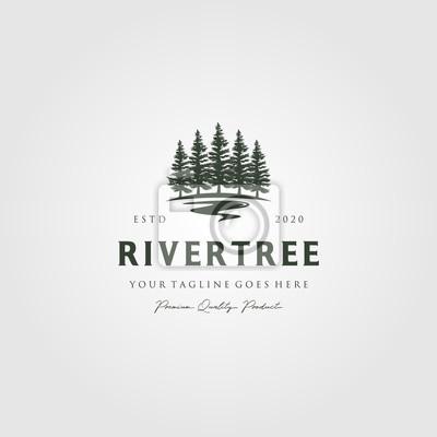 Obraz evergreen pine tree logo vintage with river creek vector emblem illustration design