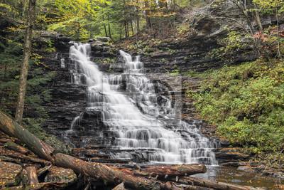 F.L. Ricketts Falls - Ricketts Glen State Park, Pennsylvania