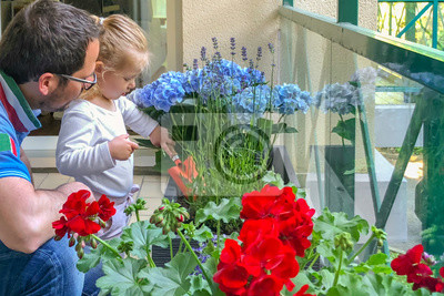 Obraz Father and daughter plant flowers on the balcony