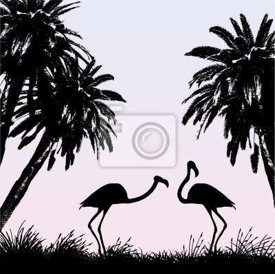 Flamingi Obrazy Na ścianę Obrazy Lepki Woliera Flamingi