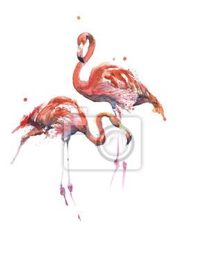 Flamingi różowe ptaki ręcznie akwarela samodzielnie na białym tle