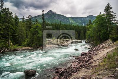 Obraz flathead river rapids in glacier national park montana
