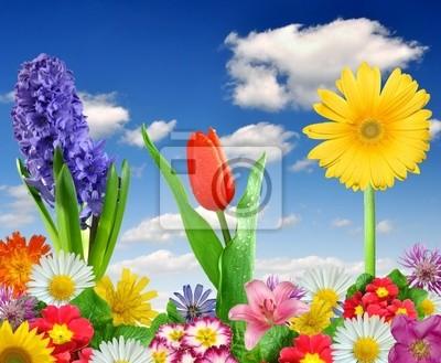Floral tle