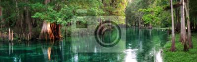 Obraz Florida wiosna karmione rzeki panorama