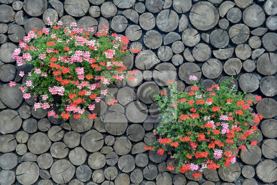 flowers on the wood background